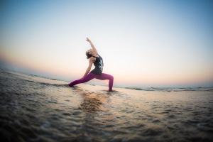 India Yoga Festival 2015-3618-1